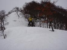 20100211_15.JPG