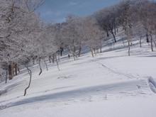 20100322_50.JPG